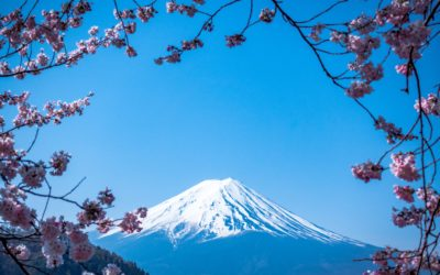 21 Things You Didn't Know About Japan