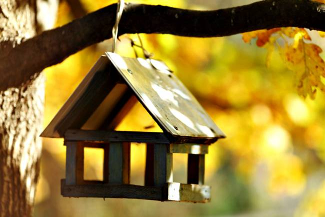 Here's one we made earlier... OK, it's a bird house, but you get the idea!