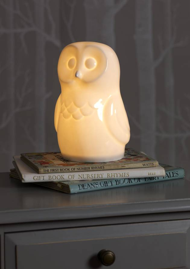 Ceramic Wise Owl