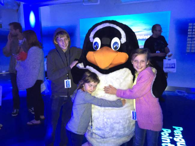 Group hug, penguin style