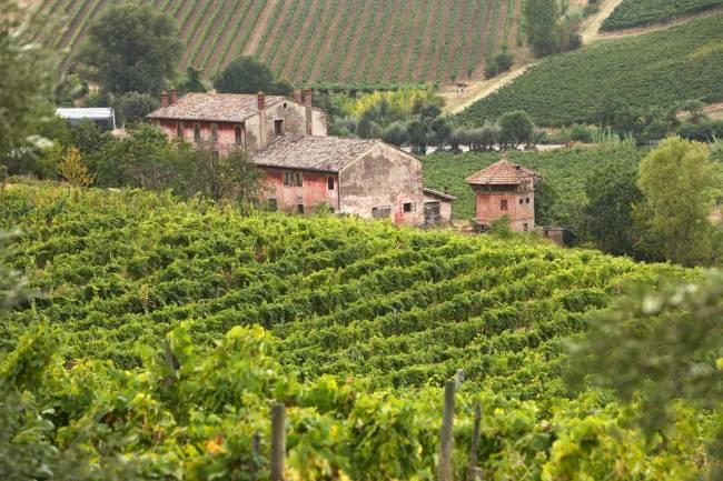 Emilia Romagna is a mecca for wine and food lovers | Image: Emilia Romagna Tourism.