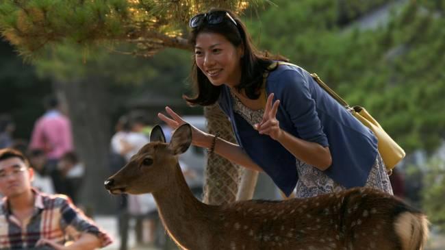 Calm down, deer | Image: BBC