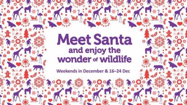 b2ap3_thumbnail_1709_Meet-Santa_Homepage-carousel_LZ_2000x1120_AW-01_20171115-152748_1.jpg