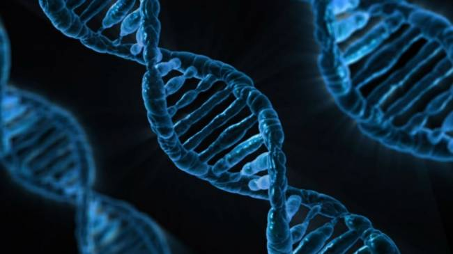 b2ap3_thumbnail_Pxabay---DNA---resized.jpg
