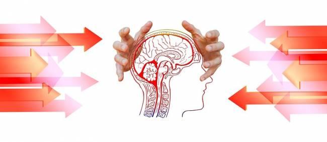 b2ap3_thumbnail_brain-being-bullied-pixabay.jpg